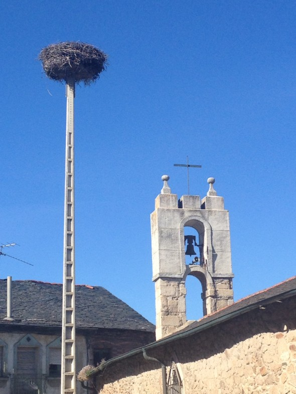I have seen quite a few of these big nests (I have been told they are made by storks, not sure if that is accurate), but usually they are on top of bell towers that provide a flat space for the nest.  This bell tower didn't have sufficient space, so apparently this bold and creative stork thought the top of a cement spire would do!  Made me laugh.
