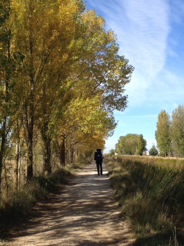 A lovely break from the hot, dry fields, this fall-colored tree-lined path was refreshing.  My new friend & history-buff Jose is up ahead.